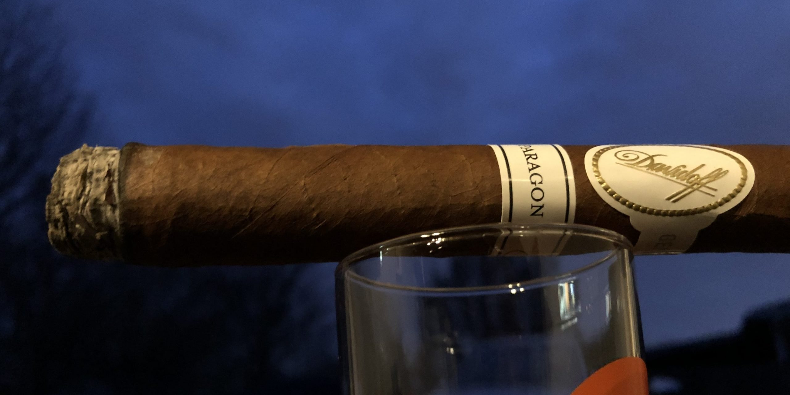 You are currently viewing Davidoff Paragon Toro