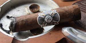 Read more about the article Flor y Nata Temptation Flower of Lust Robusto
