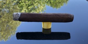 Crowned Heads Yellow Rose Box-pressed Torpedo Cigar Review
