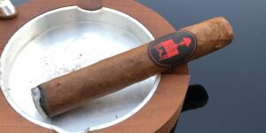 Read more about the article Lost & Found One Night Stand Cigar Review