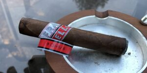 Read more about the article Fratello DMV D.C. Robusto Cigar Review