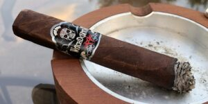 Read more about the article Witchdoktor Toro by AJ Fernandez Cigar Review