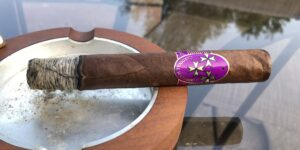 Read more about the article The French Collection Cardinal Mazarin Toro Cigar Review