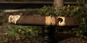 Read more about the article Stallone Castano San Andres Toro