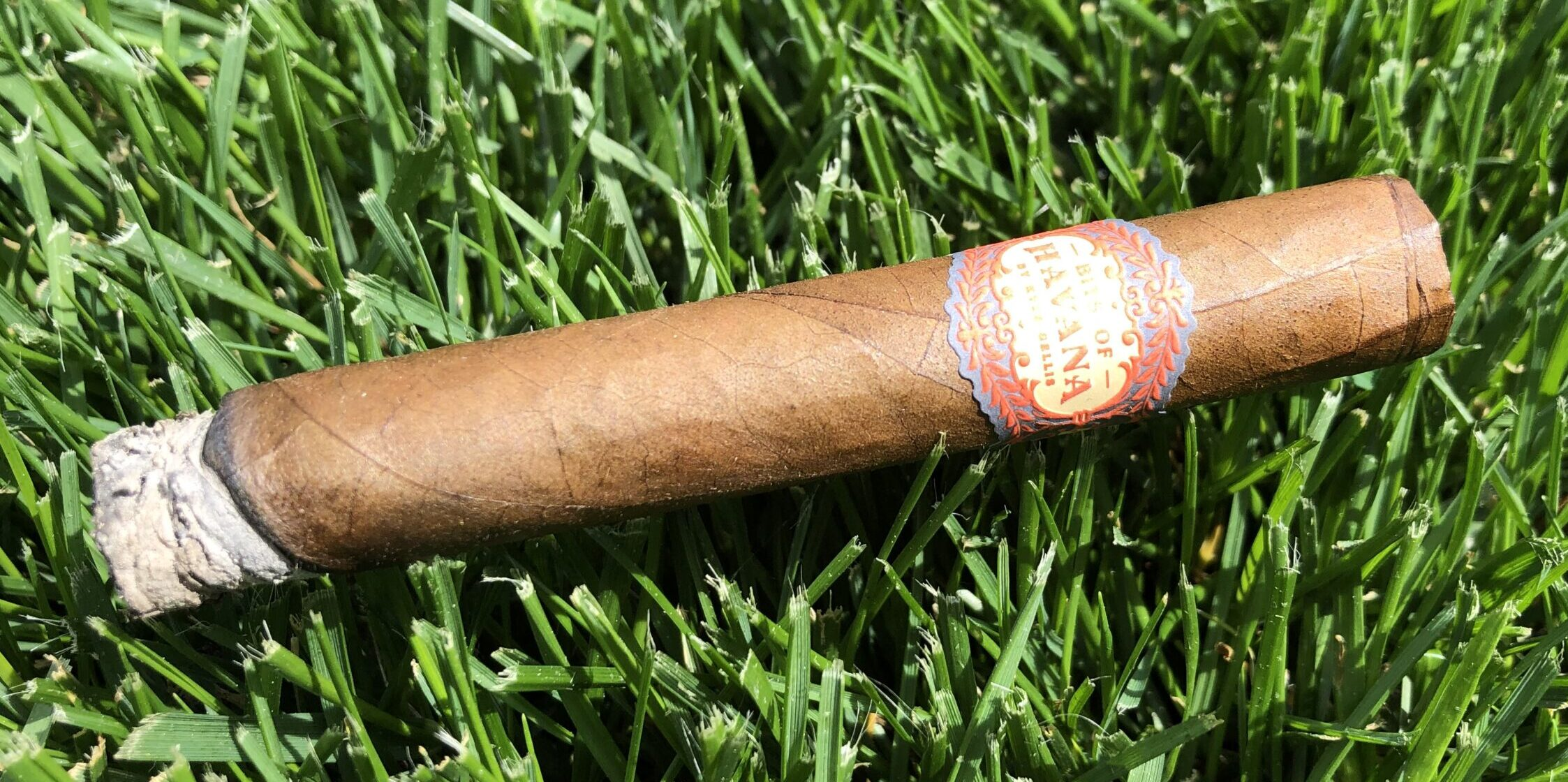 You are currently viewing Bits of Havana Petit Corona by Kyle Gellis Cigar Review