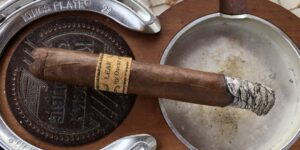 Read more about the article Leaf by Oscar Corojo Toro Cigar Review