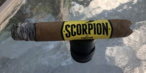 Read more about the article Scorpion by Camacho Robusto Cigar Review