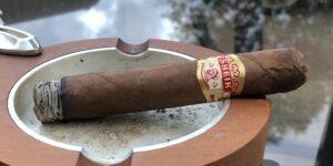 Read more about the article Vintage Fresh Sheik Robusto Cigar Review