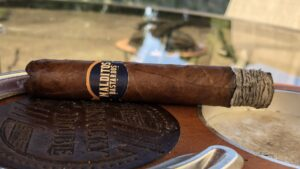 Read more about the article Lost & Found Malditos Bastardos Robusto Cigar Review