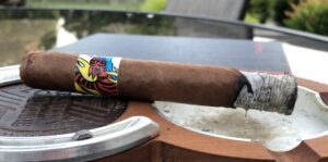 Read more about the article El Mysterious Tiger Batch No. 1 Toro by My Cigar Pack Cigar Review