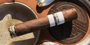 Read more about the article Twin Pines Box-pressed Robusto by Jochy Blanco Cigar Review